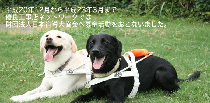 財団法人日本盲導犬協会への募金活動をおこないました。